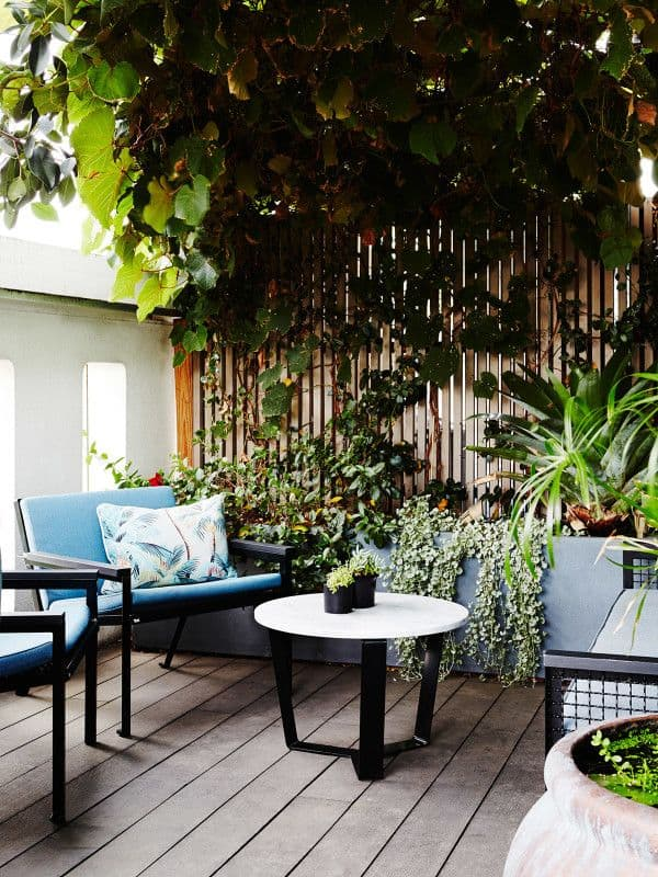 A Lush Rooftop Garden In Inner City Fitzroy Design Files Australia